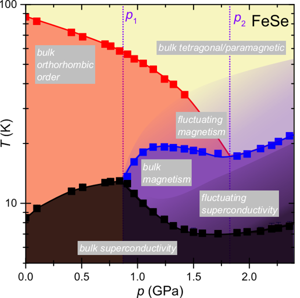 Temperature-pressure phase diagram of FeSe from specific heat measurements.