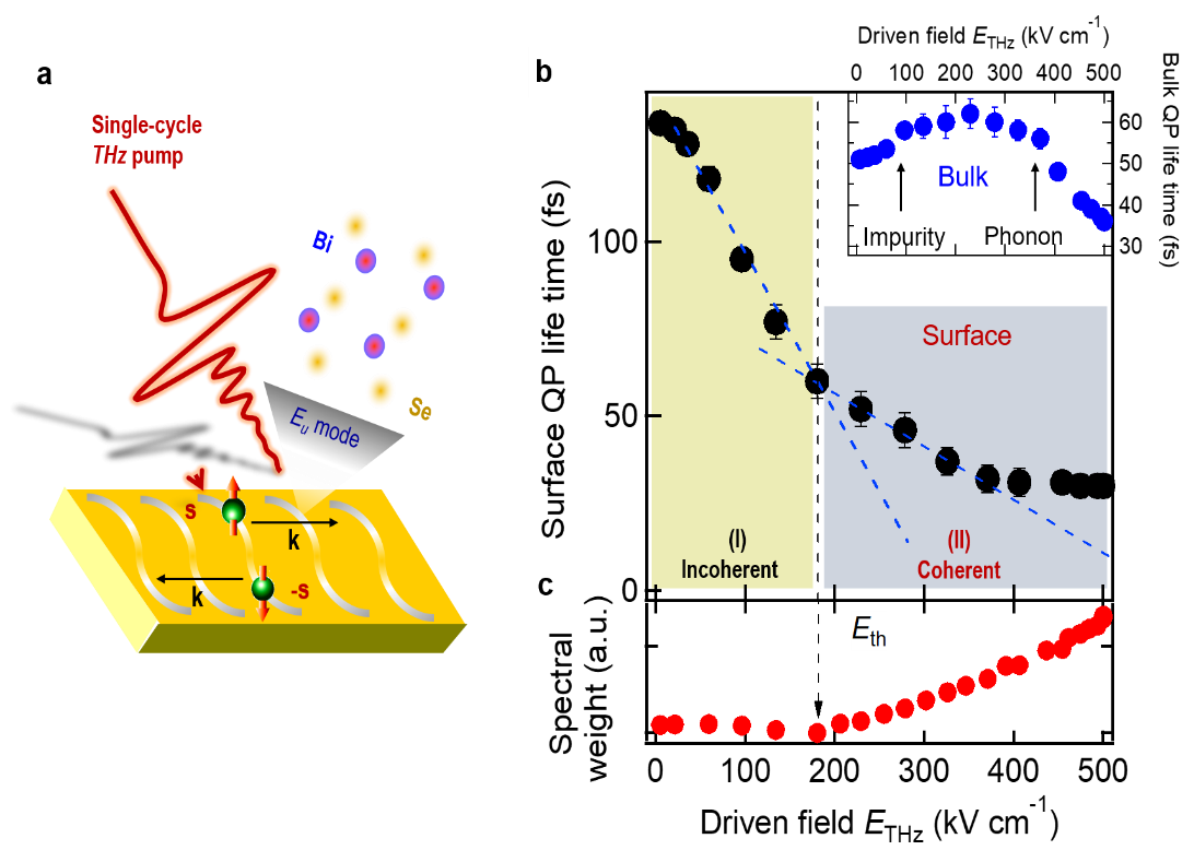 Illustration of topological control by quantum periodic motion