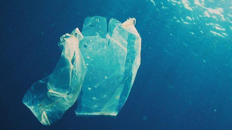 BBC image of plastic bag in water